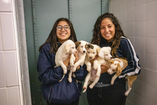 Two young ladies smiling. Girl on the left has long dark hair and glasses and the girl on the right has long dark, curly hair . Both are holding a pair of white, fluffy puppies.