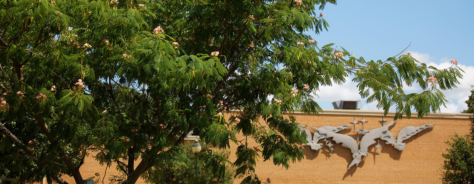 A photo of a tree with green leaves and pink flowers in front of a light tan, bricked building with three silver angels on it.